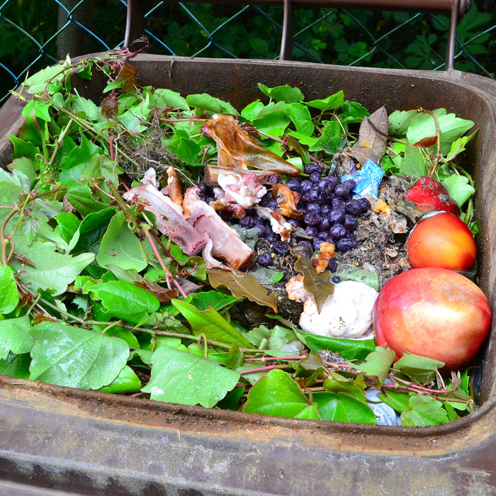 ews food recycling