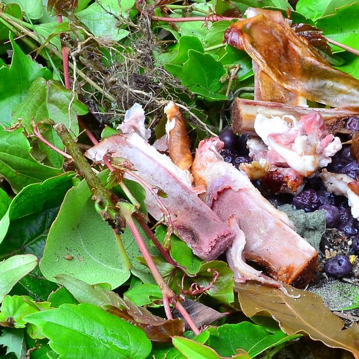 ews - food waste